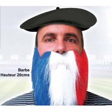 Barbe tricolore aux couleurs de la France pour supporter