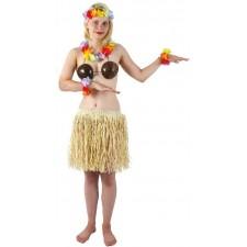 Jupe hawaïenne naturelle raphia de 40 cm pour adulte