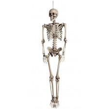 Squelette taille humaine 160 cm déco Halloween